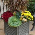 Container garden featuring flowers, cole plants and dried grass