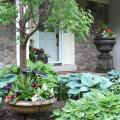Grouped container gardens draw the eye from one to the next