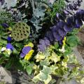 We choose different plant materials to make your spring container garden fun and unique