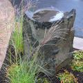 Unique elements like this dish rock into the landscape brings character to your garden.